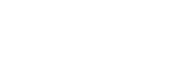 Crow River Bat Control